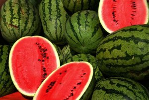 watermelon - summer